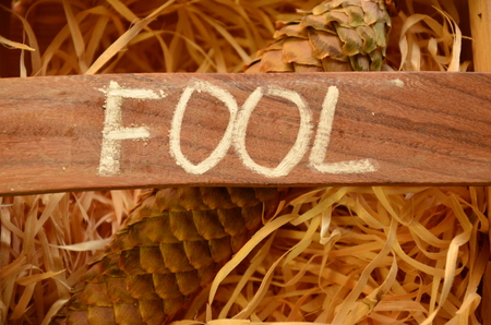 Photo for word fool - Royalty Free Image