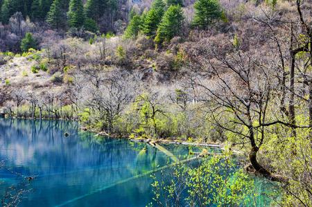 Photo for Jiuzhaigou - Royalty Free Image