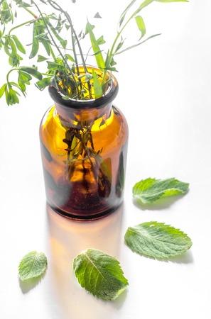 Foto de Homeopathy. Medicinal herbs in glass on white background. - Imagen libre de derechos