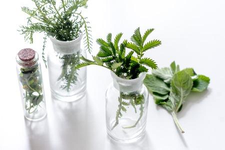 Foto de Fresh medicinal herbs in glass on white background. - Imagen libre de derechos