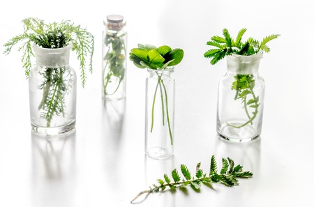 Foto de Homeopathy. Medicinal herbs in glass on white background. - Imagen libre de derechos