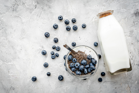 Photo pour How to eat chia seeds. Dessert with yogurt, chia and blueberries on grey background top view. - image libre de droit