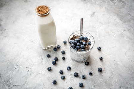 Photo pour How to eat chia seeds. Dessert with yogurt, chia and blueberries on grey - image libre de droit