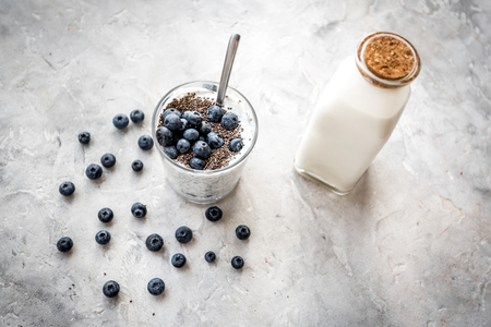 Photo pour How to eat chia seeds. Dessert with yogurt, chia and blueberries on grey background. - image libre de droit