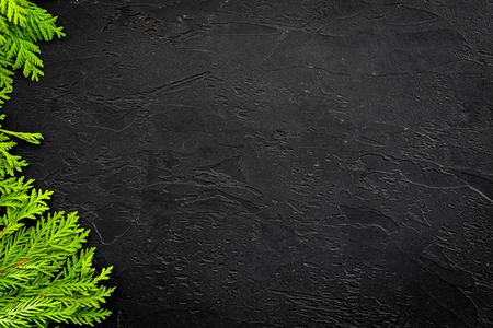 Photo pour Juniper frame for poster or design. Juniper branches on black background top view. - image libre de droit