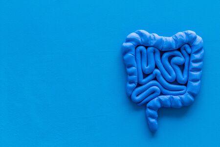 Photo pour Intestines health. Guts on blue  top view. - image libre de droit