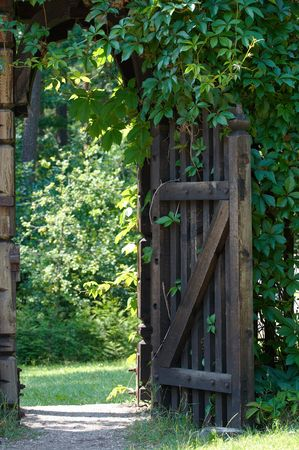 Opened wooden gate decorated with green climbing plant.