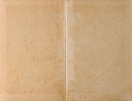 Unfolded old ancient book cover - parchment paper texture background