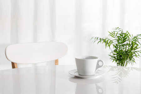 Foto de White cup on the kitchen table, with green plant in the background. - Imagen libre de derechos