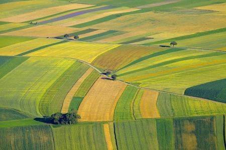 Photo pour Aerial view of agricultural fields - image libre de droit