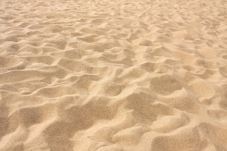 Foto per Lines in the sand of a beach - Immagine Royalty Free