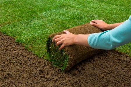 Photo pour Woman applying turf rolls in the backyard - image libre de droit