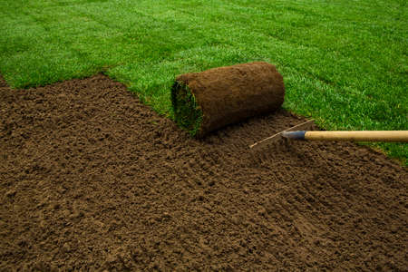 Foto de Gardener applying turf rolls in the backyard - Imagen libre de derechos