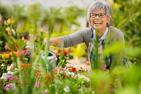 Photo pour Beautiful mature woman in a garden watering flowers - image libre de droit