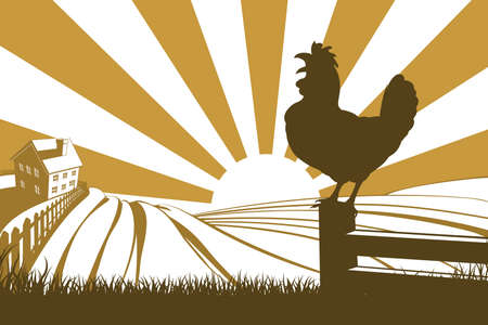 Illustration pour Silhouette rooster cockerel crowing at dawn with sunrise in the background and rolling farm hills and farmhouse - image libre de droit