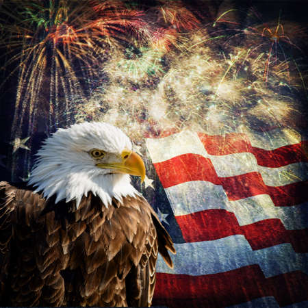 Photo pour Composite photo of a Bald Eagle with a flag and fireworks in the background  Given a grunge overlay for a nice aged effect   Nice patriotic image for Independence Day, Memorial Day, Veterans Day and Presidents Day  - image libre de droit