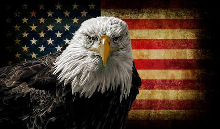 Foto de Oil painting of a majestic Bald Eagle against a photo of a battle distressed American Flag. - Imagen libre de derechos