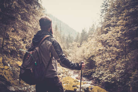 Photo for Man with hiking equipment walking in mouton forest - Royalty Free Image