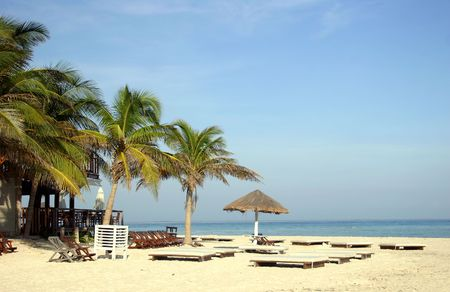 Coconut palms, parasol and sunbeds on tropical beach. Isla Mujeres, Yucatan, Mexico.