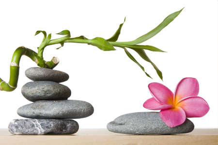 Stone stacks with tropical flowers and lucky bamboo