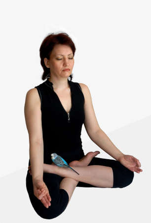 Exercises of yoga support health and viability, treat many illnesses, promote spiritual development, remove stress and a pressure. They are the important part of a healthy way of life and have therapeutic influence both on our body, and on our consciousne