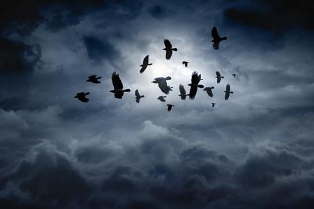 Foto de Flock of flying ravens, crows in dark moody sky - Imagen libre de derechos