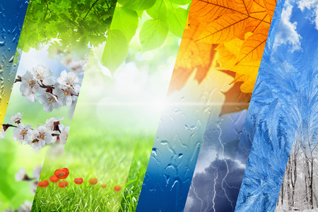 Foto de Beautiful nature background - four seasons of year collage, vibrant images of different time of year - winter, spring, summer, autumn - Imagen libre de derechos