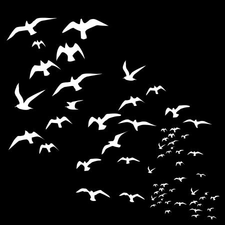 Illustration pour black background birds life vector art - image libre de droit