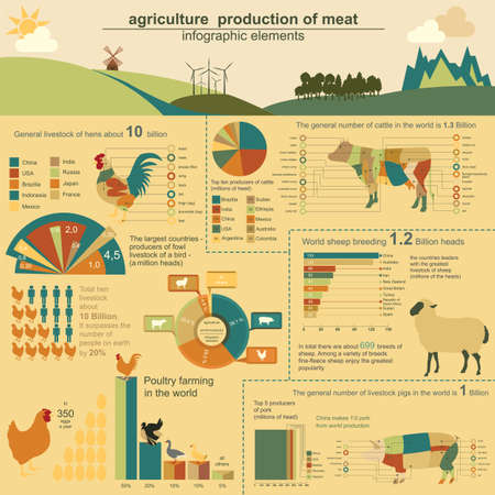 Illustration pour Agriculture, animal husbandry infographics, Vector illustrationstry info graphics. Vector illustration - image libre de droit