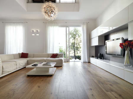 modern living room overlooking the garden
