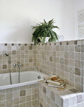 detail of bathtub in a modern bathroom with plant