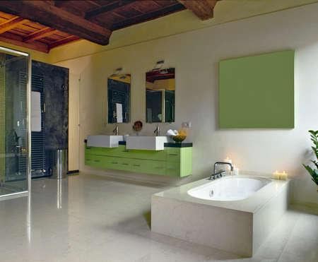 green furniture in a modern bathroom and bathtub