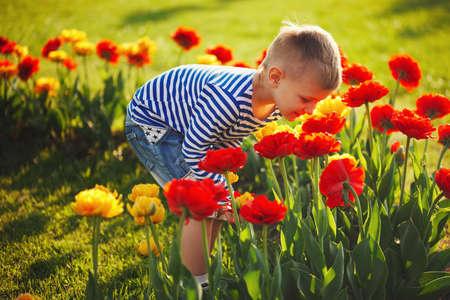 Foto für little boy with flowers - Lizenzfreies Bild