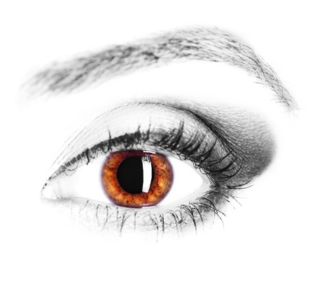 Foto de image of human eye, brown iris, close up - Imagen libre de derechos