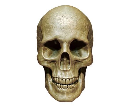 Photo pour Skull isolated in background 3d render - image libre de droit