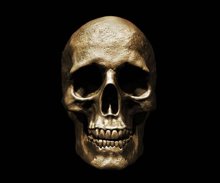 Photo pour Skull isolated in background 3d illustration - image libre de droit