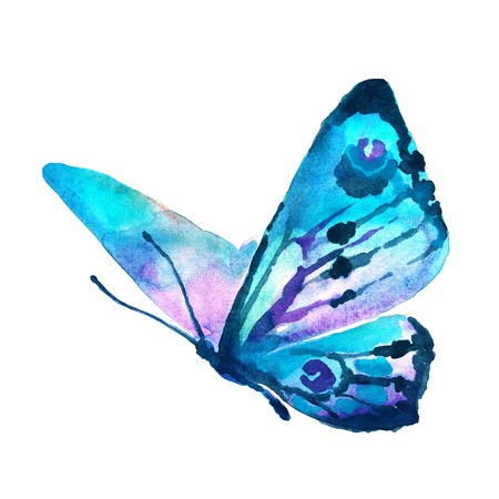 Foto de butterflies design - Imagen libre de derechos