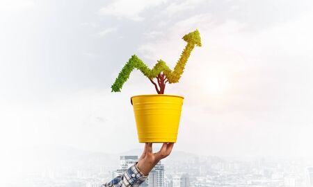 Foto de Green plant in shape of grow up trend in yellow pot. Business analytics and statistics. Friendly ecosystem for business and investment. Human hand holding pot with green plant. Financial progress - Imagen libre de derechos