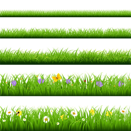 Illustration pour Big Grass Set With Butterfly And Flowers With Gradient Mesh, Vector Illustration - image libre de droit