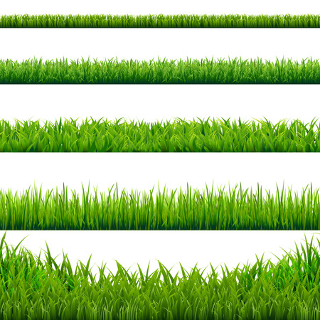 Illustration pour Big Grass Borders Set, Vector Illustration - image libre de droit