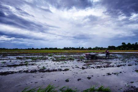 Photo pour Landscape of fields in the evening with wheel plow - image libre de droit