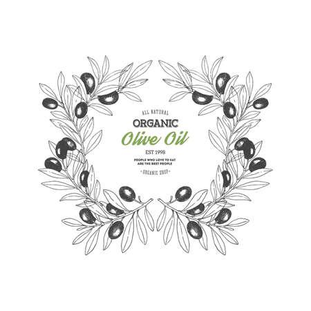 Illustration for Olive branch. Design template. Vintage style packaging composition. Vector illustration - Royalty Free Image