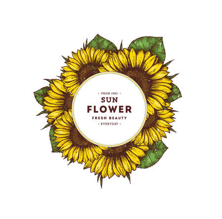 Ilustración de Sunflower vintage design template. Sunflower round composition. Vector illustration - Imagen libre de derechos