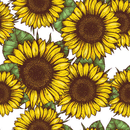 Illustration for Sunflower seamless pattern. Sunflower fabric background. Vector illustration - Royalty Free Image