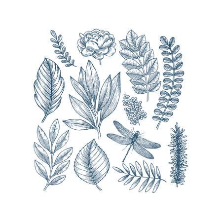 Illustration for Hand drawn plant and flower collection. Vintage engraved flower set. Vector illustration. - Royalty Free Image