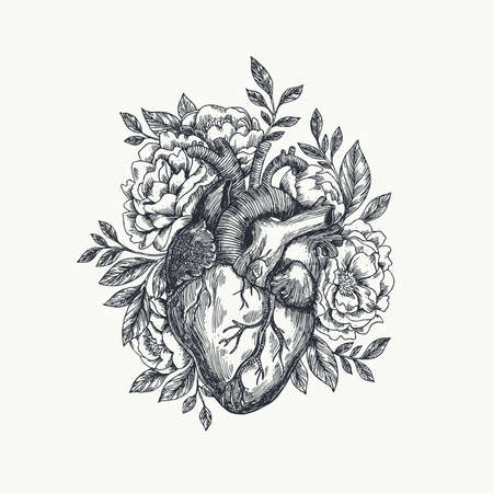 Illustration for Valentines day card. Anatomical heart with flowers. Vector illustration. - Royalty Free Image