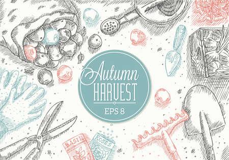 Ilustración de Autumn Harvest Frame - Imagen libre de derechos