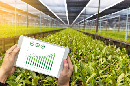 Photo pour agriculture technology concept man Agronomist Using a Tablet in an Agriculture Field read a report - image libre de droit