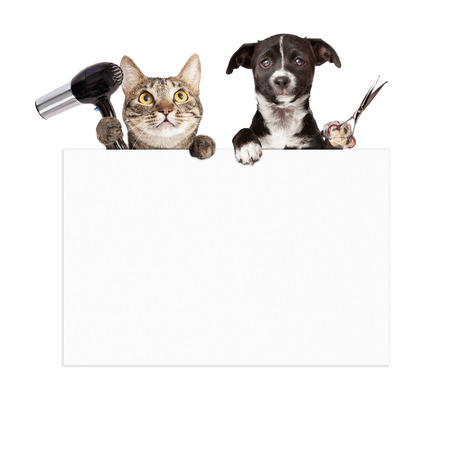 Photo pour A cat holding a hair dryer and a dog holding cutting shears while hanging over a blank sign that is ready for you to enter your grooming service message on - image libre de droit