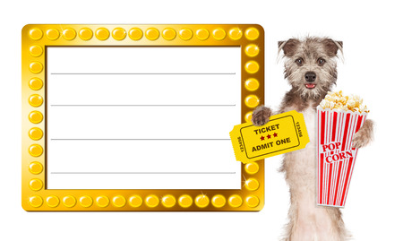 Cute dog next to a blank illuminated show sign holding popcorn and an admission ticket